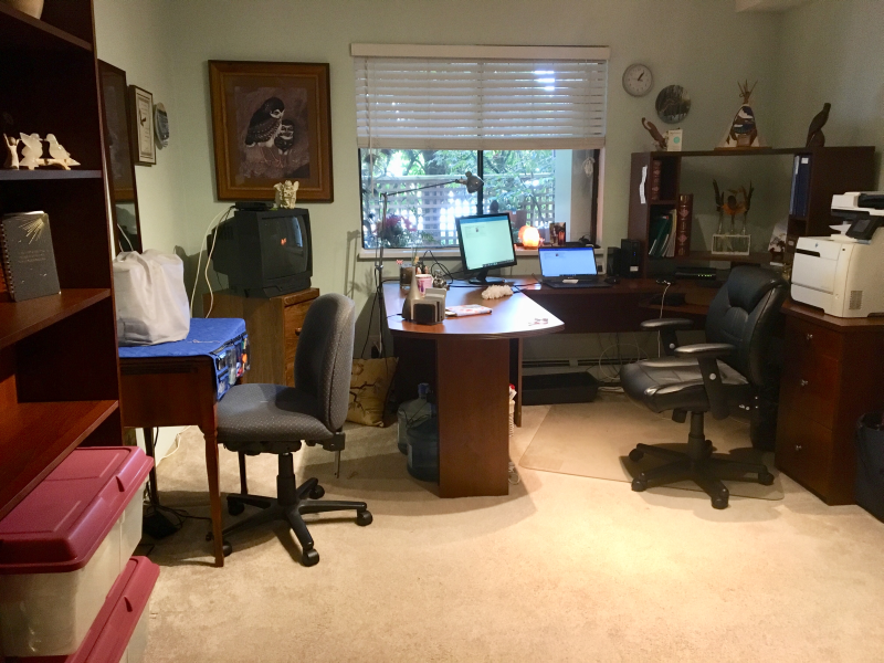 Donna's Office after the consultation. A dream come true for Donna. https://connygraf.com